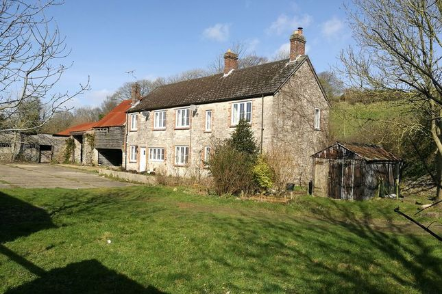 Thumbnail Detached house for sale in Winterbourne Steepleton, Dorchester