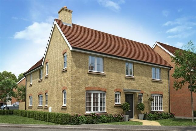 Thumbnail Detached house for sale in The Langdale Hadham Road, Bishop's Stortford