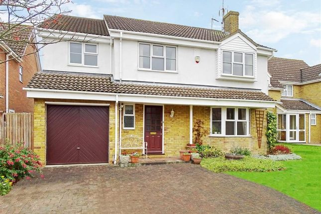 Thumbnail Detached house for sale in Little Nell, Chelmsford, Essex