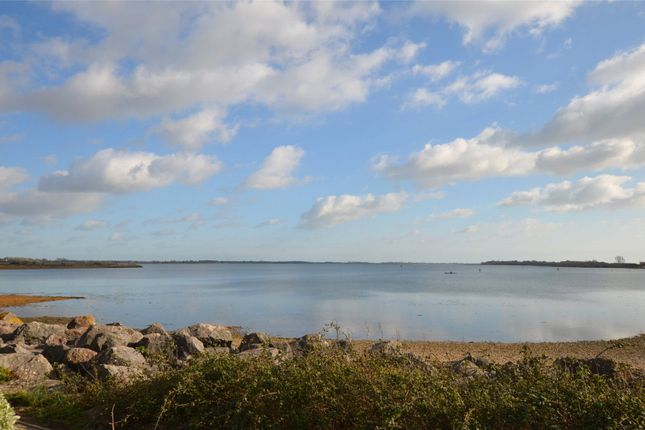 Thumbnail Bungalow for sale in Prinsted Lane, Prinsted, Emsworth, West Sussex