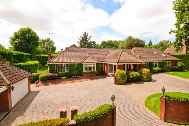 Thumbnail Bungalow for sale in Oxhey Drive South, Northwood