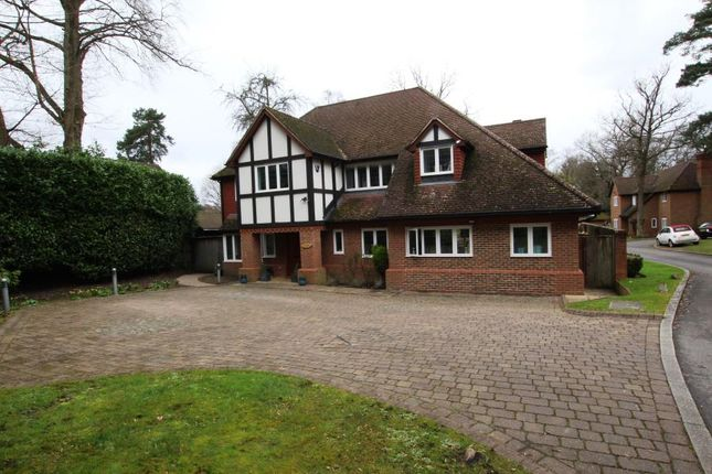 Thumbnail Detached house to rent in Golf Club Road, Hook Heath, Woking