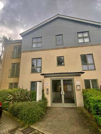 Thumbnail Flat to rent in Circular Road East, Colchester