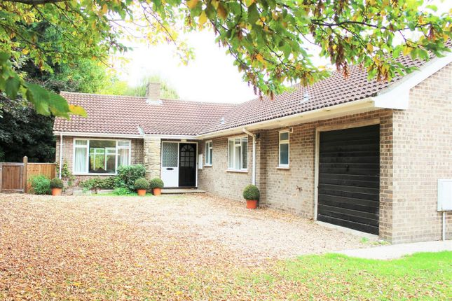 Thumbnail Detached bungalow to rent in Wellington Road, Taunton