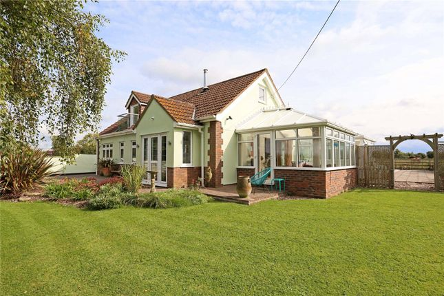 Thumbnail Detached bungalow for sale in Woollard Lane, Publow, Bristol