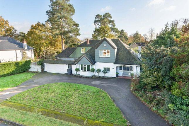 Cleves Wood, Weybridge, Surrey KT13