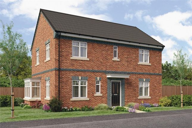 "Thumbnail Detached house for sale in ""Stevenson"" at Croston Road, Farington Moss, Leyland"