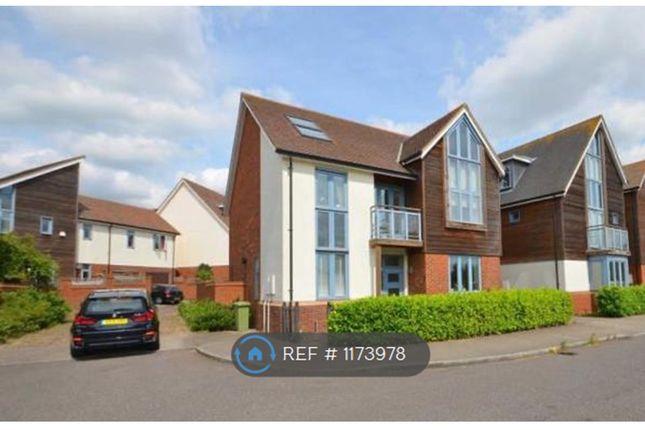 Room to rent in Kingswear Drive, Broughton, Milton Keynes MK10