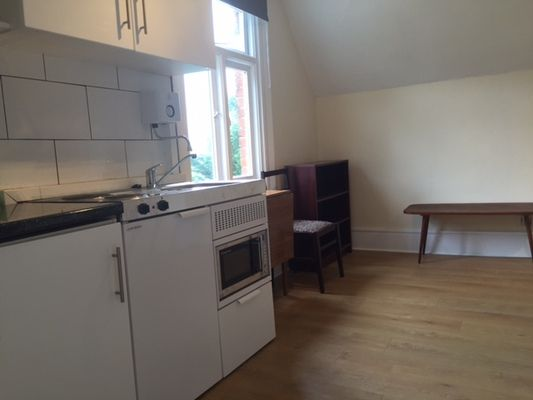 Studio to rent in Green Lanes, London