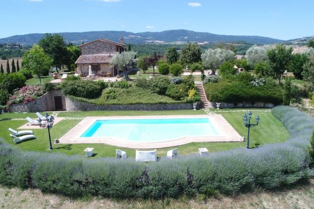 Thumbnail Farmhouse for sale in Chiusi, Tuscany, Italy