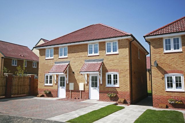 """Thumbnail End terrace house for sale in """"Ashford"""" at Ponds Court Business, Genesis Way, Consett"""