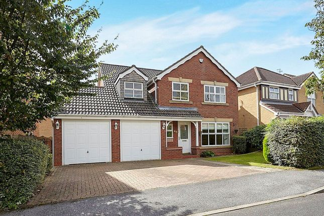Thumbnail Detached house to rent in Acorn Way, Hessle