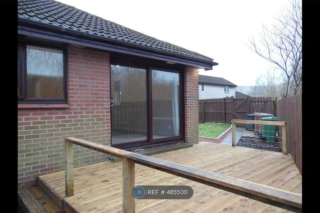 Thumbnail Bungalow to rent in Collier Street, Johnstone