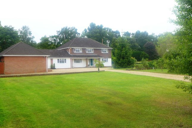 Thumbnail Detached house for sale in Odiham Road, Winchfield, Hook