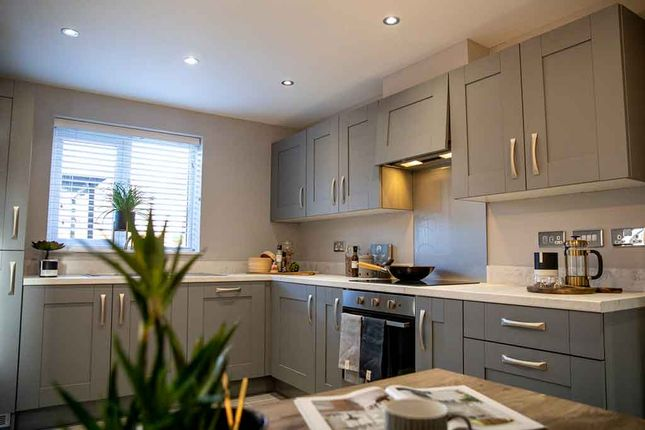 "4 bed property for sale in ""The Elm"" at Gibside, Chester Le Street DH2"