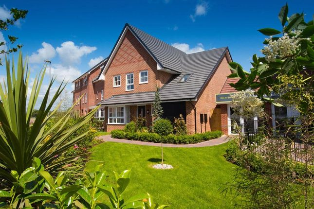 "Thumbnail Detached house for sale in ""Harborough"" at Filter Bed Way, Sandbach"