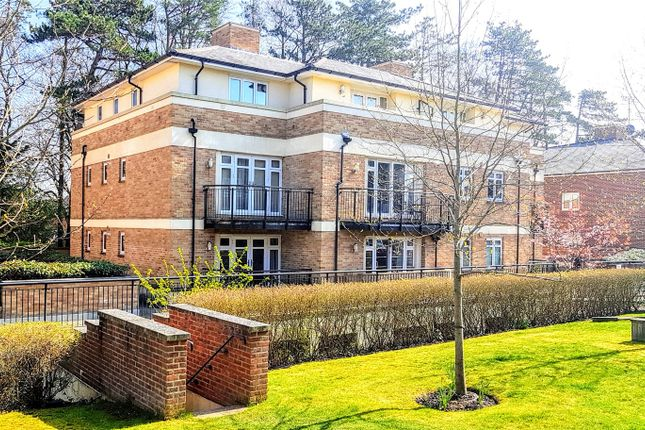 Thumbnail Flat to rent in Fraser Gardens, Winchester, Hampshire