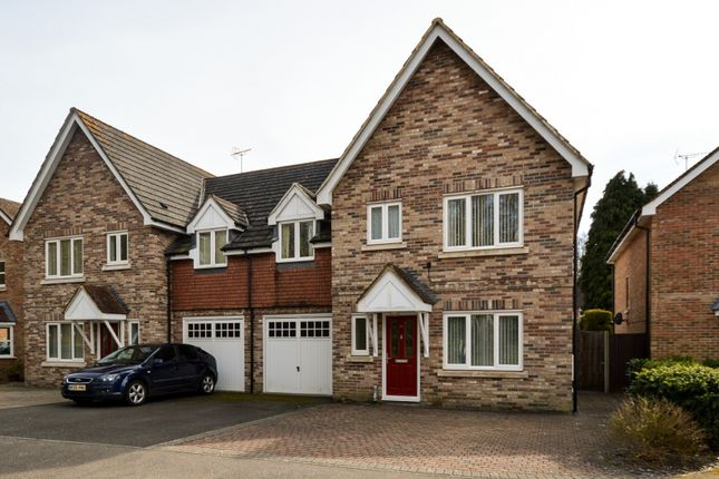 Thumbnail Detached house to rent in The Glade, Storrington