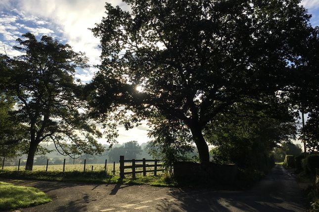 Thumbnail Land for sale in Caldew Bank Field, Cummersdale, Carlisle