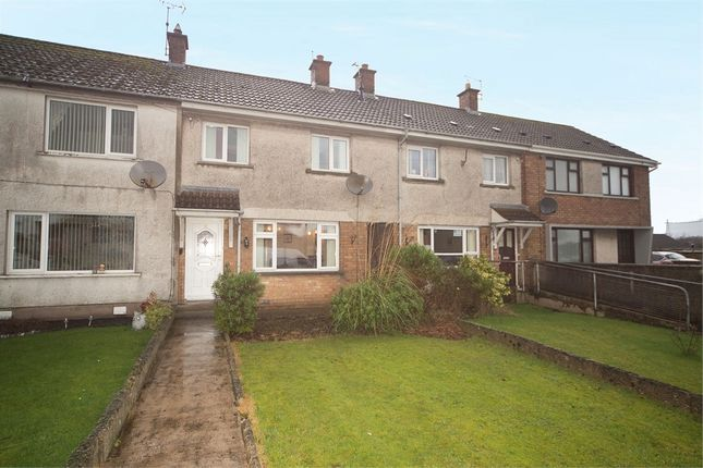 Thumbnail Terraced house for sale in Drumahoe Gardens, Millbrook, Larne, County Antrim