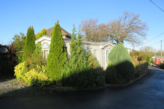 Thumbnail Mobile/park home for sale in Oaklands Caravan Site, Hatherleigh Road, Okehampton