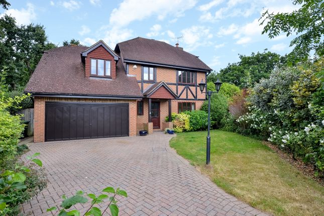 Thumbnail Detached house to rent in Sevenfields, Burgess Hill