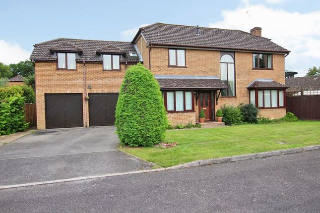 Thumbnail Detached house for sale in Chidden Holt, Chandler's Ford, Eastleigh