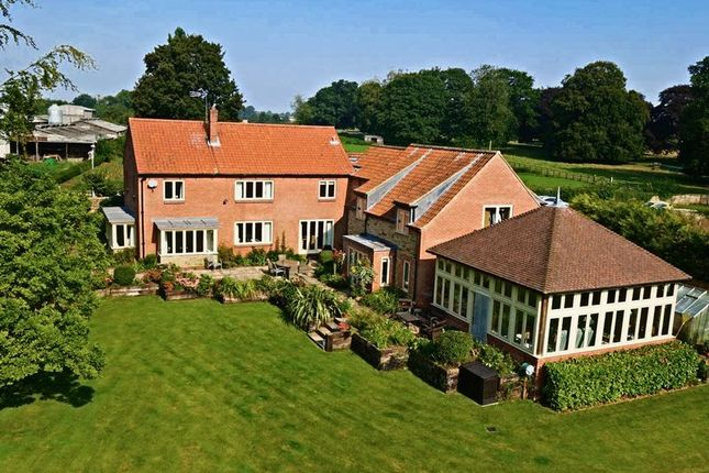 Thumbnail Detached house for sale in Nordham, North Cave, Brough