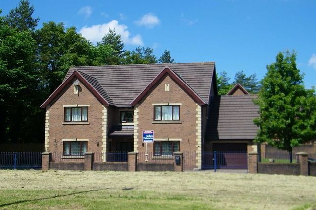 Thumbnail Detached house for sale in Clos Bryngwili, Hendy, Pontarddulais, Swansea