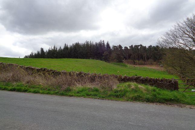Thumbnail Land for sale in Land At Salkeld Road, Penrith