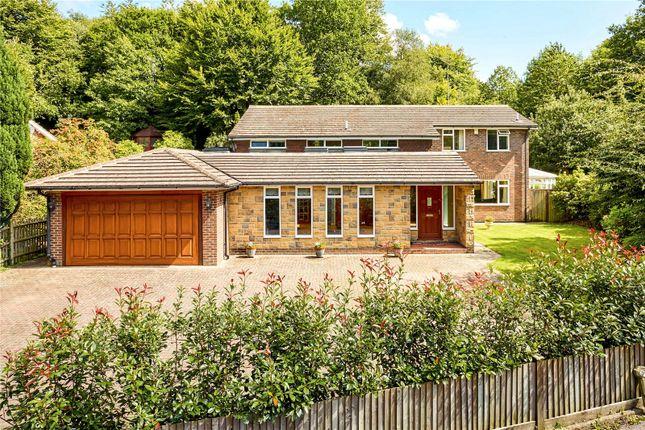 Thumbnail Detached house for sale in Hopgarden Lane, Sevenoaks, Kent