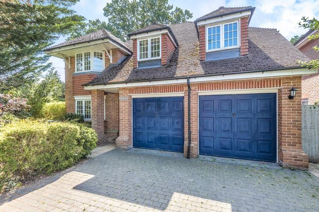 Thumbnail Detached house to rent in The Avenue, Ascot