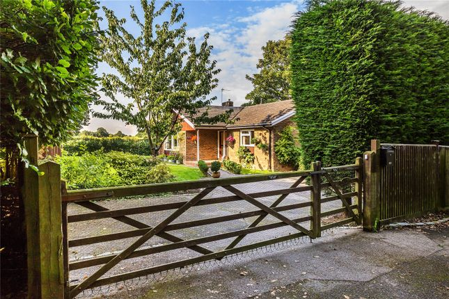 Thumbnail Detached bungalow for sale in Long Reach, West Horsley, Leatherhead, Surrey