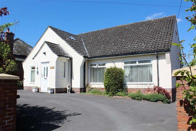 Thumbnail Detached bungalow for sale in Upper Bryn Coch, Mold, Flintshire