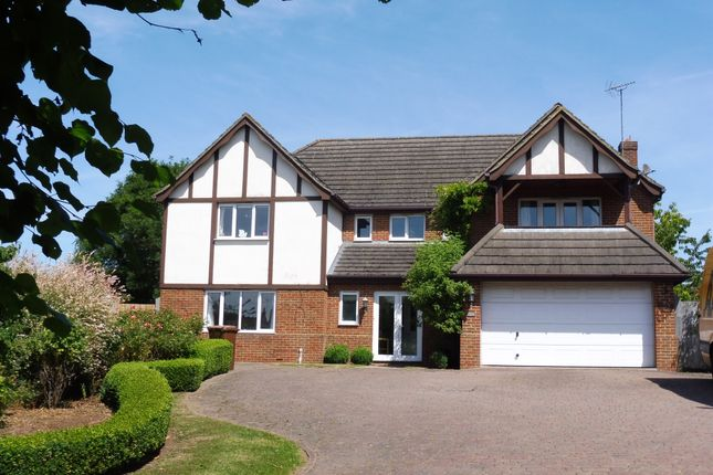 Thumbnail Detached house for sale in Huntingdon Road, Thrapston, Kettering