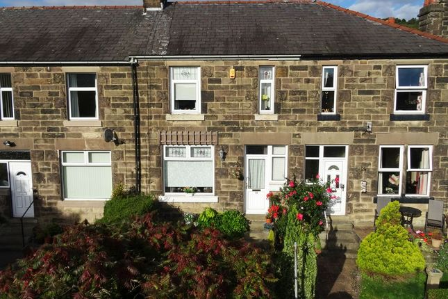 Thumbnail 3 bed property to rent in Whitworth Avenue, Darley Dale, Matlock, Derbyshire