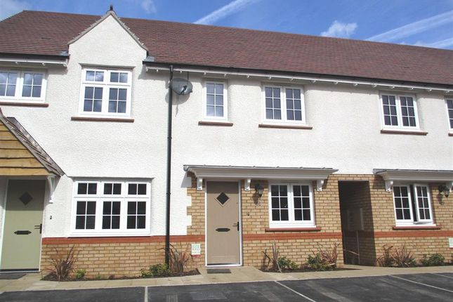 Thumbnail Terraced house to rent in Capel Dewi Hall Road, Newport