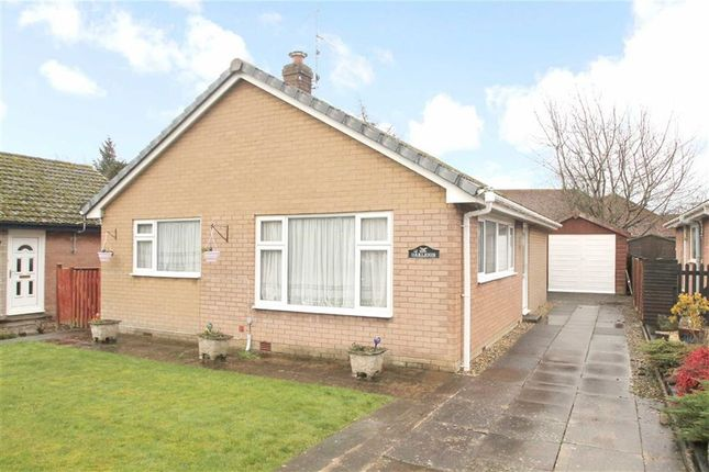 Thumbnail Detached bungalow for sale in Fairview Avenue, Guilsfield, Welshpool