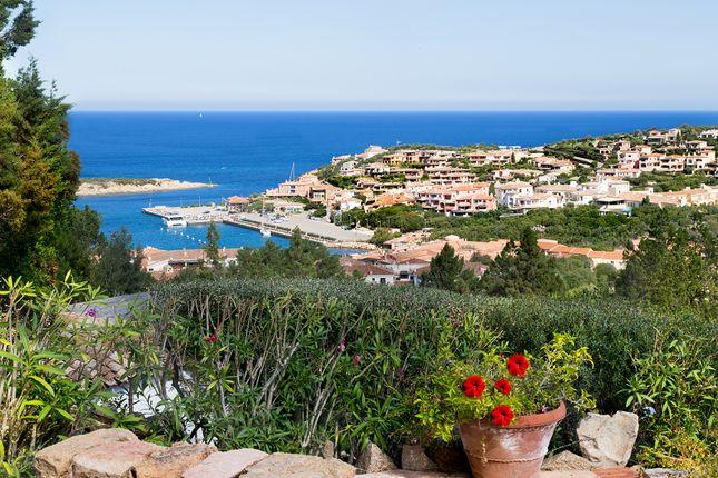 estate italy real sardinia - photo#31