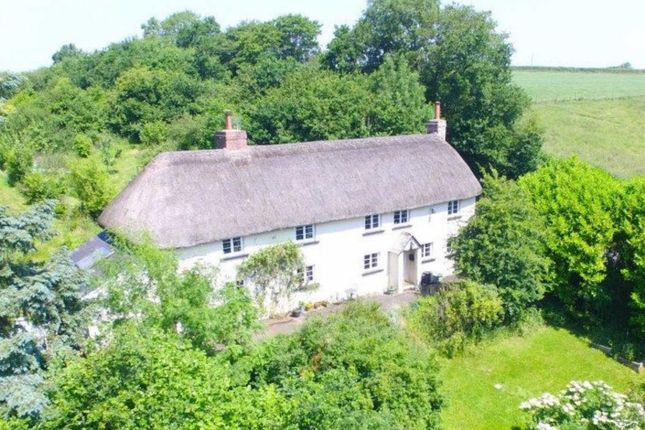 Thumbnail Property for sale in Winkleigh, Devon