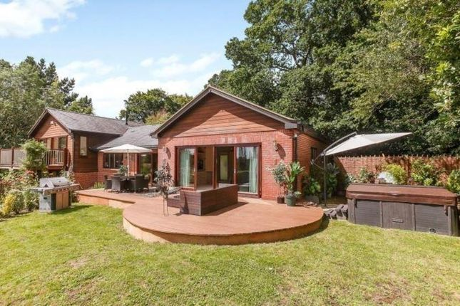 Thumbnail Detached house to rent in Widmore Lane, Sonning Common, Reading