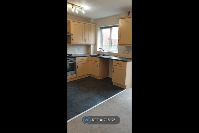 Thumbnail Semi-detached house to rent in Lavender Close, Shirebrook, Mansfield