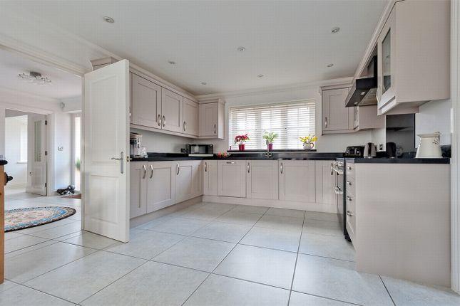 Thumbnail Detached house for sale in De Vere Place, Gosfield, Essex