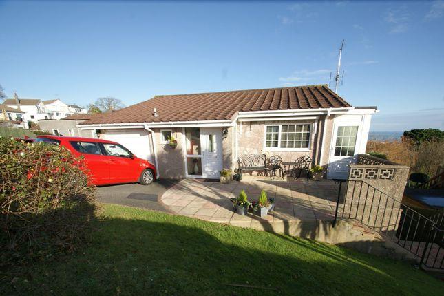 Thumbnail Detached house for sale in Dolphin Crescent, Paignton, Devon