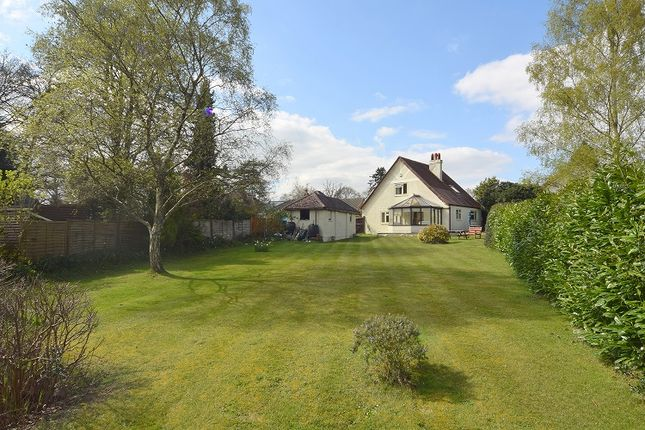 Thumbnail Detached house for sale in Highland Road, Wimborne, Dorset