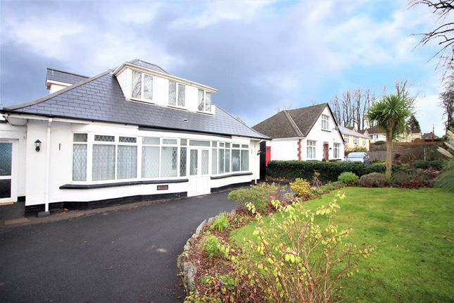 Thumbnail Detached house for sale in Newton Road, Torquay