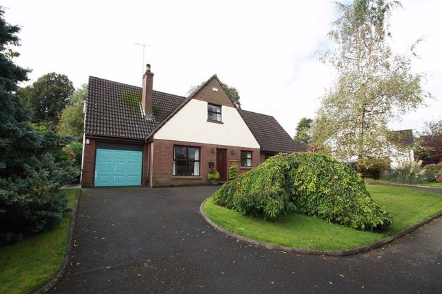 Thumbnail Detached house for sale in The Beeches, Ballynahinch, Down