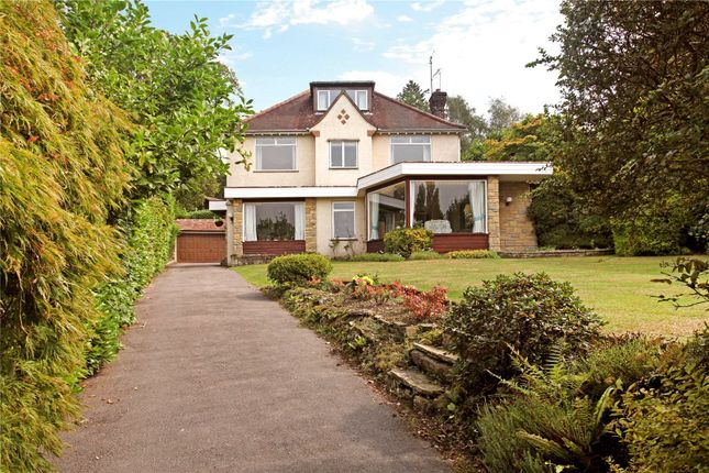 Thumbnail Detached house for sale in Deepdene Drive, Dorking, Surrey