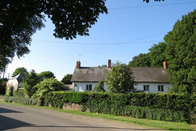 Thumbnail Farmhouse for sale in West Quantoxhead, Taunton