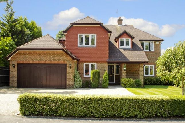 Thumbnail Detached house to rent in Fairlawn Park, Horsell, Woking
